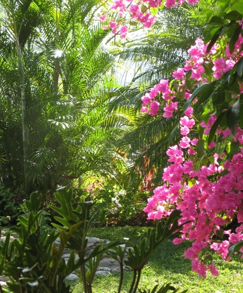 Jamaica Boutique Guest House Luxury Caribbean Holiday