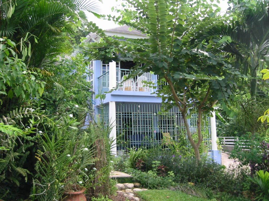 Jamaica Villa Ocho Rios Luxury Villa Caribbean Villa