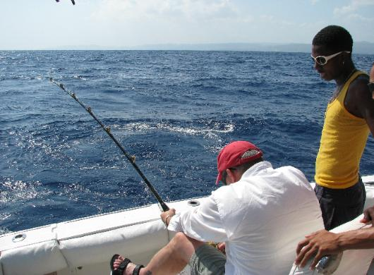 Ocho rios jamaica deep sea fishing and sport fishing for Deep sea fishing jamaica